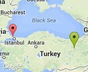 erzincan Üzümlü _ istanbul