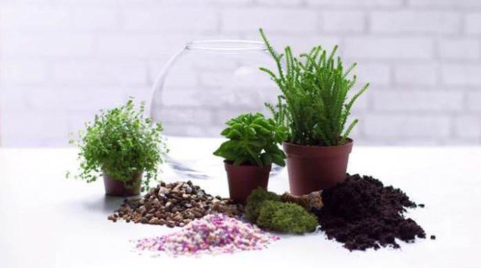 minik bahçeler oluşturun